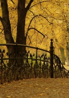 bridge railing, park, autumn