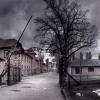 building, wooden, street