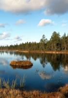 lake, grass, autumn
