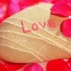 love, stone, shell