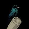 raven, bird, pipe
