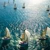 sail, sea, swimming
