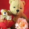 valentines day, bears, hearts