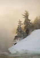 winter, fog, snow