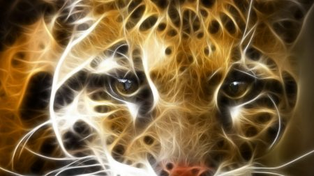 abstraction, tiger, face