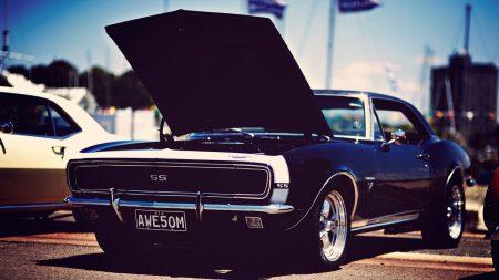 american cars, muscle, stylish