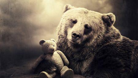 bear, face, toy