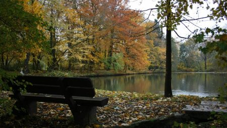 bench, lake, autumn