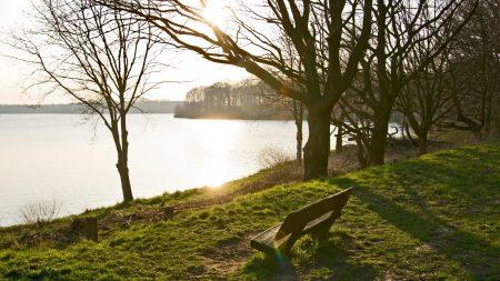 bench, lake, park