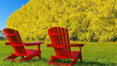 chairs, autumn, red