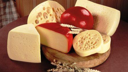 cheese chedar grain 43408 1920x1080 450x253 Coffee Grain Coffee Grains Wallpaper X