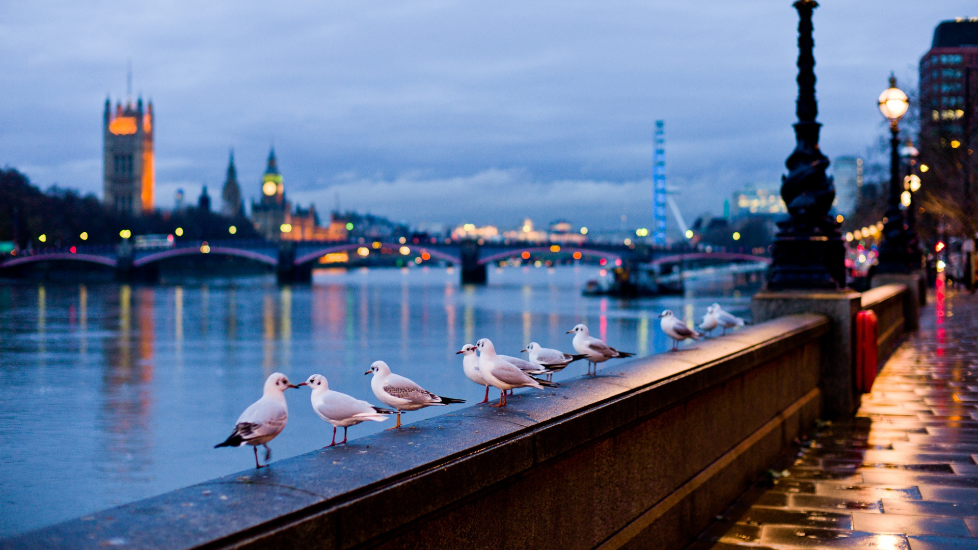 download wallpaper 1920x1080 city, london, england, street, river