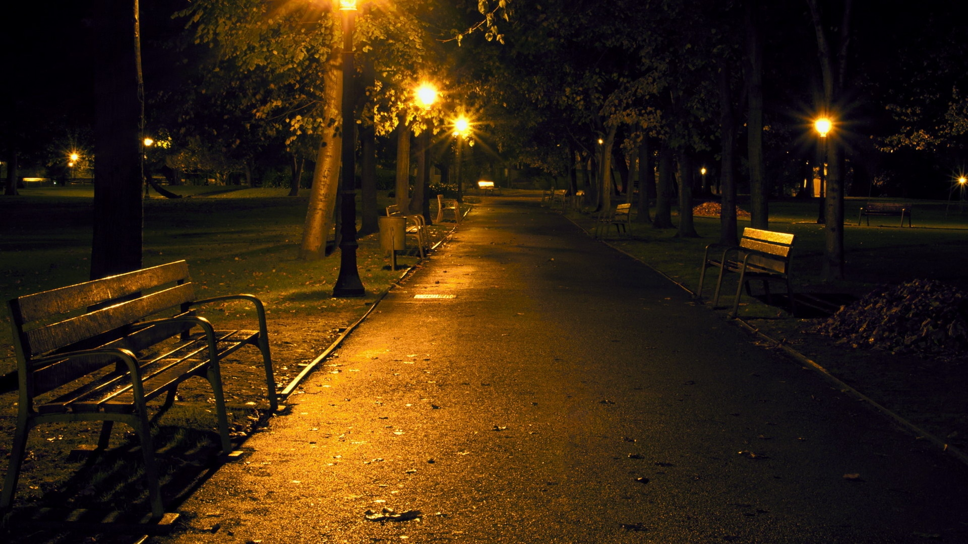Earnings Disclaimer >> Download Wallpaper 1920x1080 city, night, park, benches Full HD 1080p HD Background