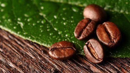 coffee beans, surface, leaves