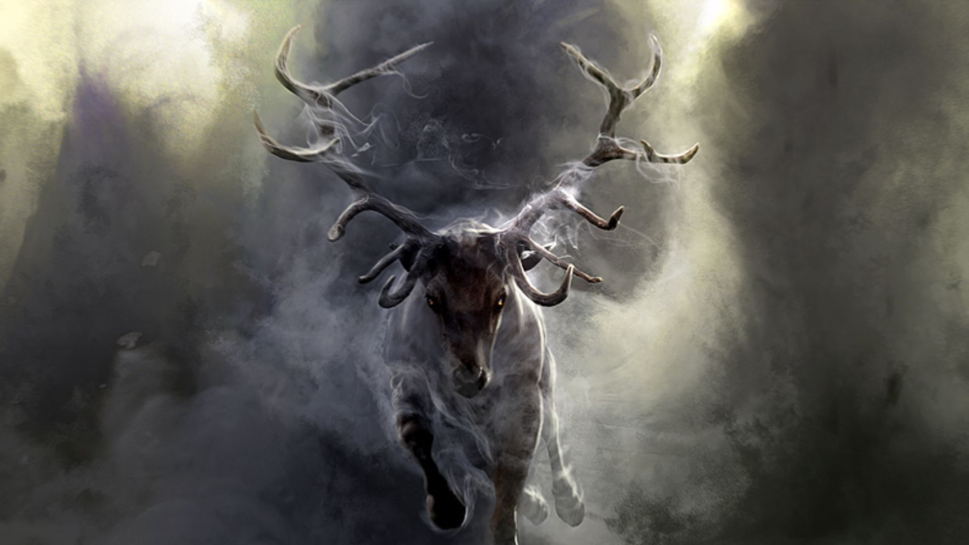 Get The Latest Deer Smoke Run News Pictures And Videos Learn All About From Wallpapers4uorg Your Wallpaper Source