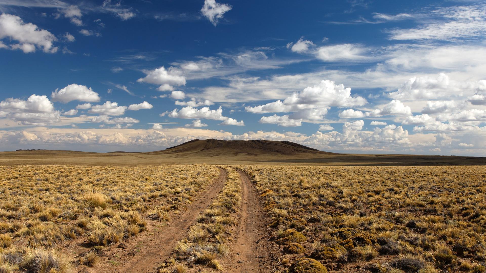 Download Wallpaper 1920x1080 Desert Road Vegetation Full HD 1080p