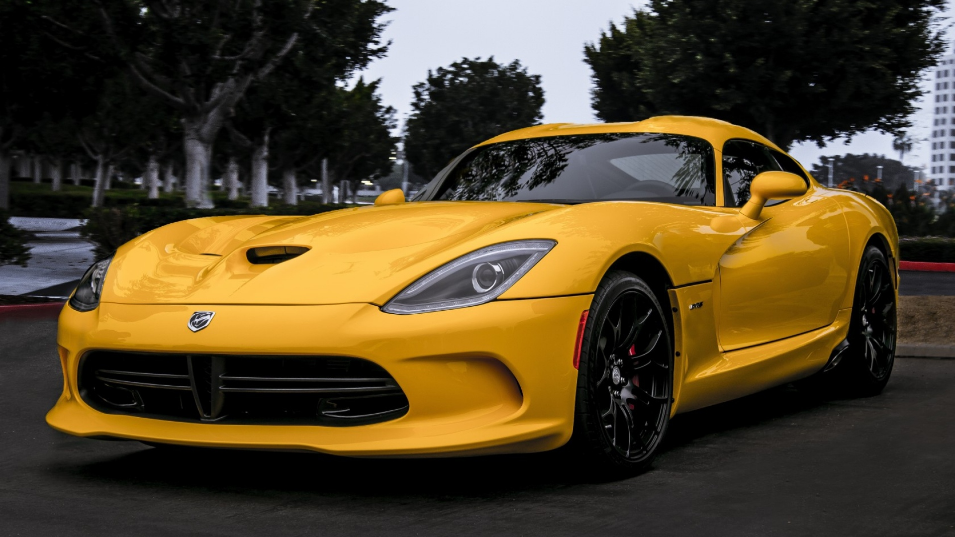 Download Wallpaper 1920x1080 dodge, viper, yellow, front view, trees