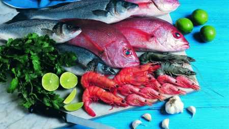 fish, fresh, shrimps