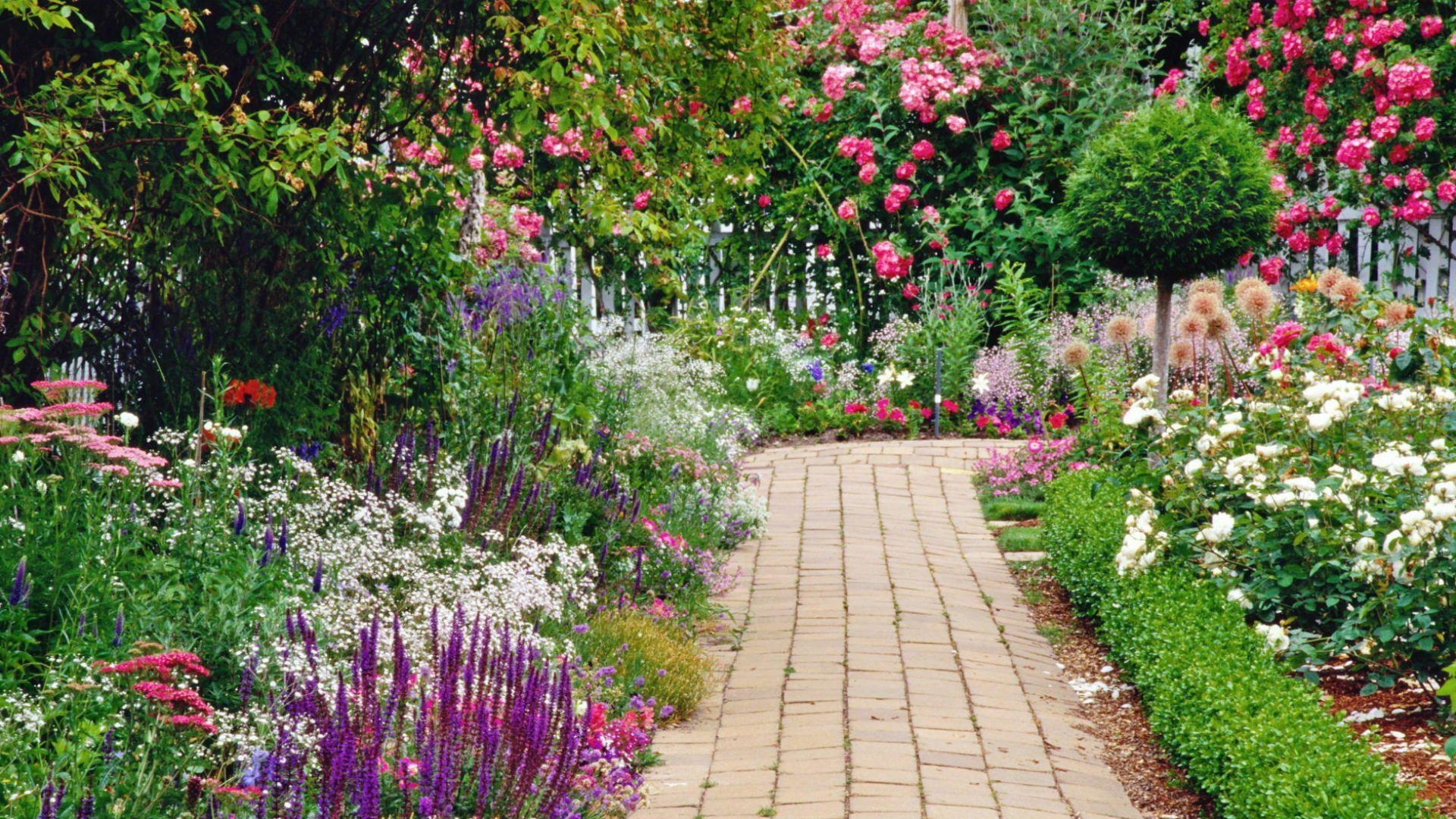 download wallpaper 1920x1080 flowers, garden, green, walking paths
