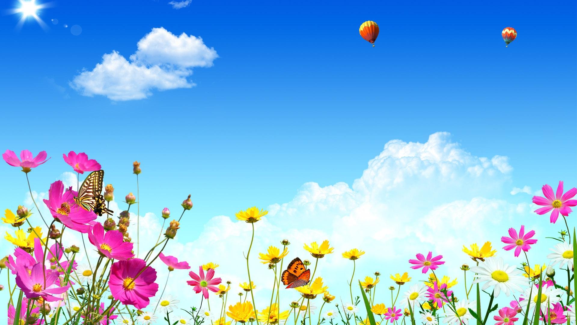 download wallpaper 1920x1080 tulips flowers butterflies nature