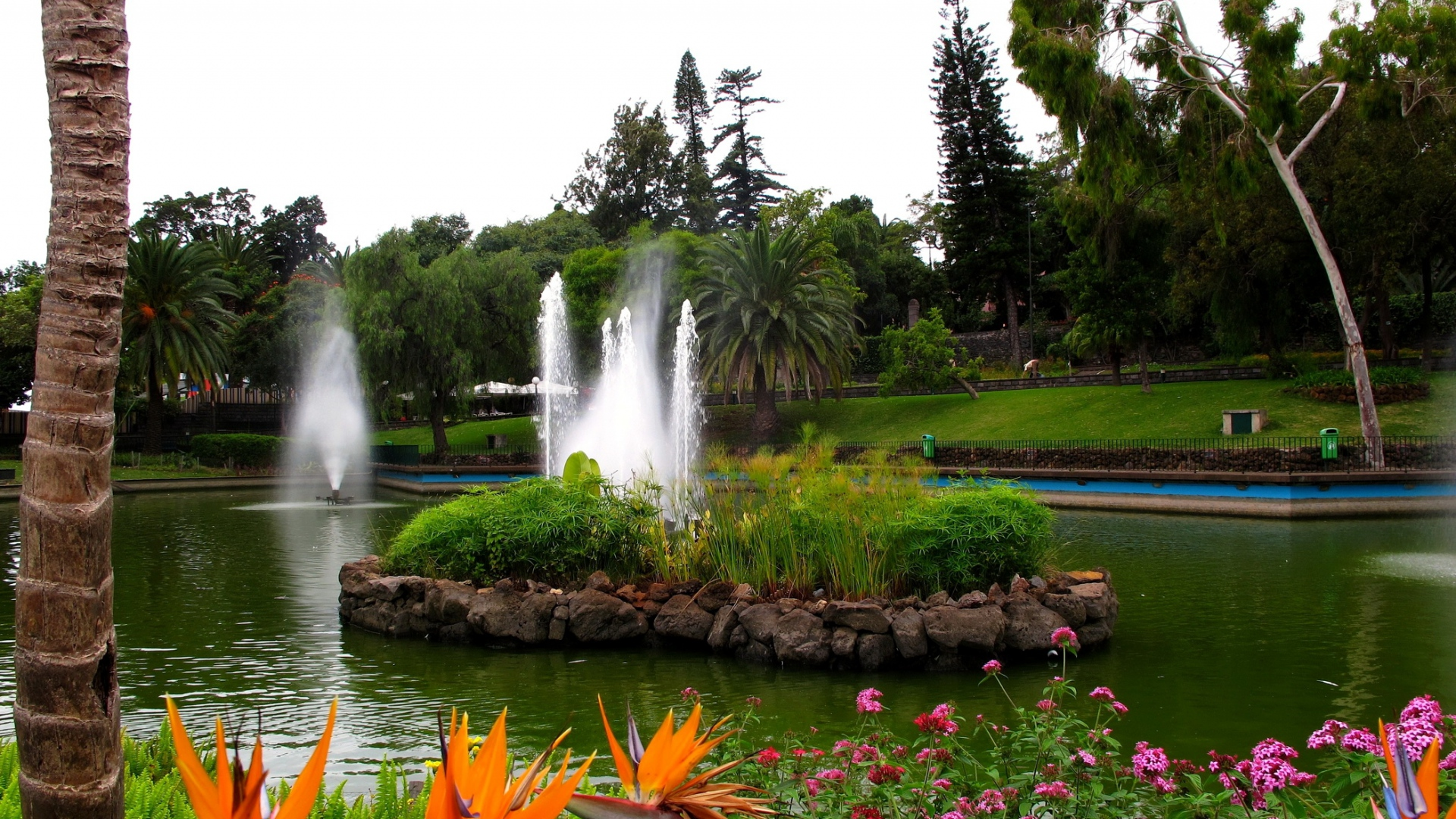 Download Wallpaper 1920x1080 Fountain Pond Garden Registration Flowers Yellow Brightly Full HD 1080p Background