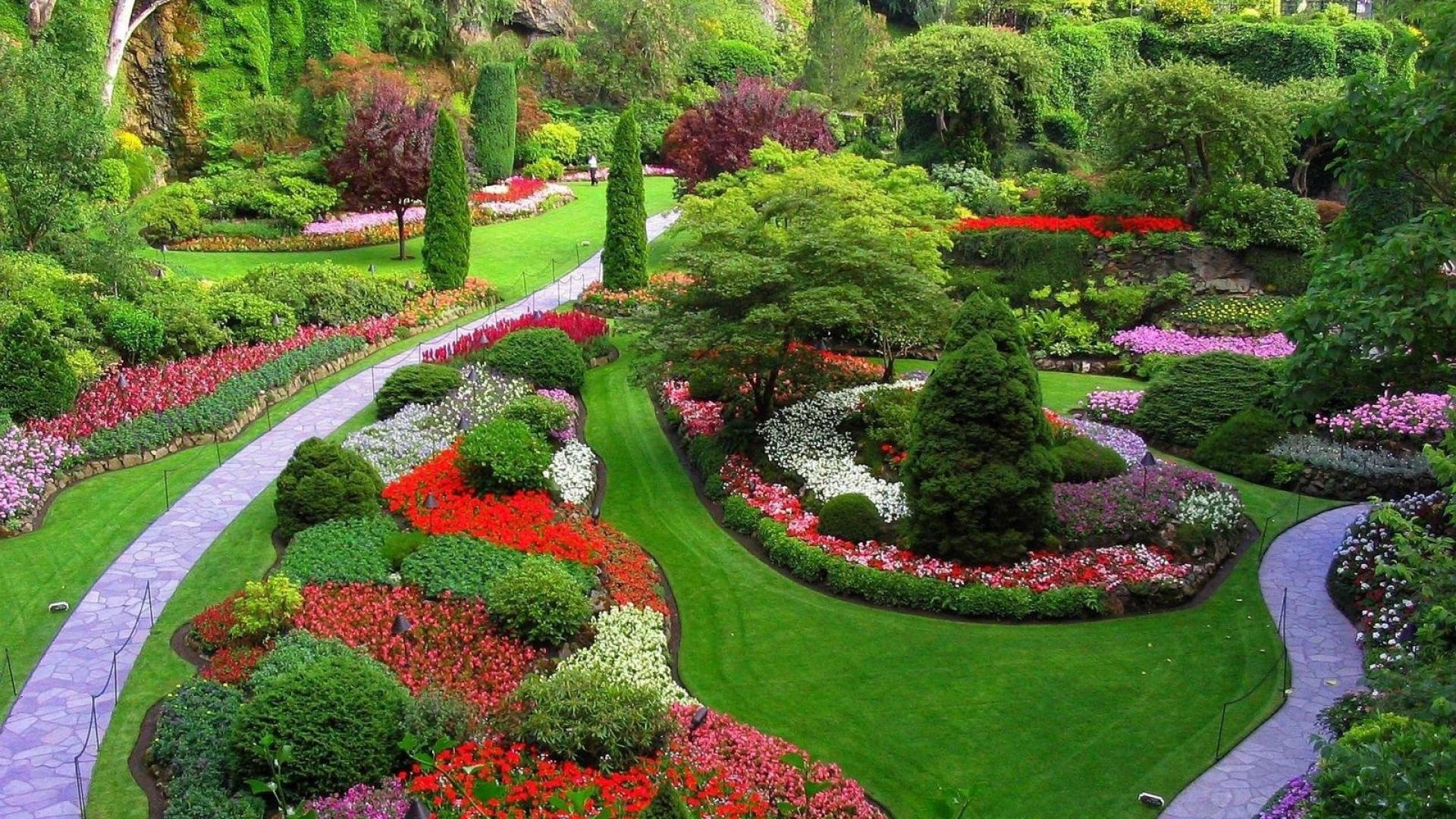 Marvelous Garden, Footpaths, Flowers