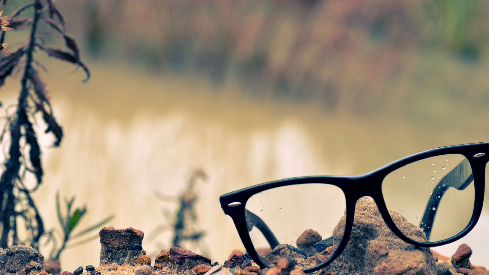 Download Wallpaper 1920x1080 glasses, lenses, rocks, grass ...
