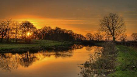 grass, river, nature