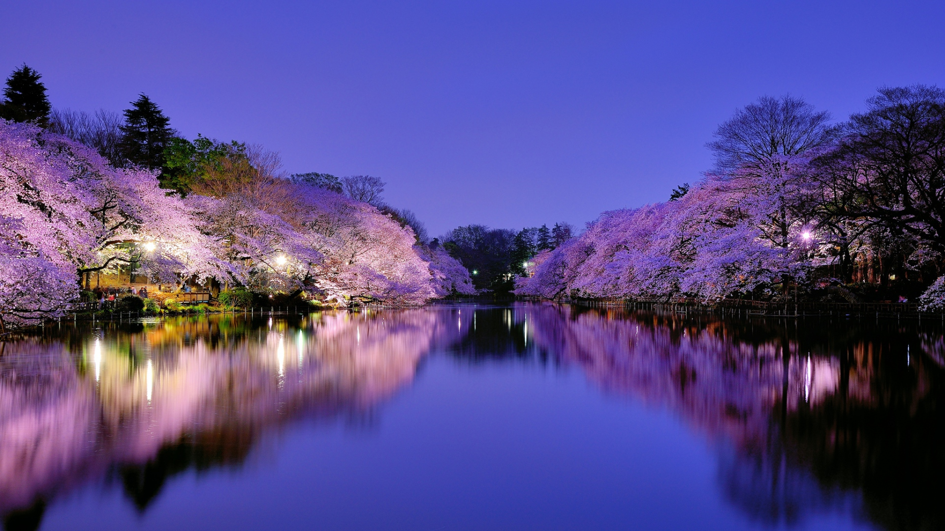 Download Wallpaper 1920x1080 Japan Osaka City Park Lake Light