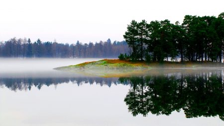 lake, morning, fog