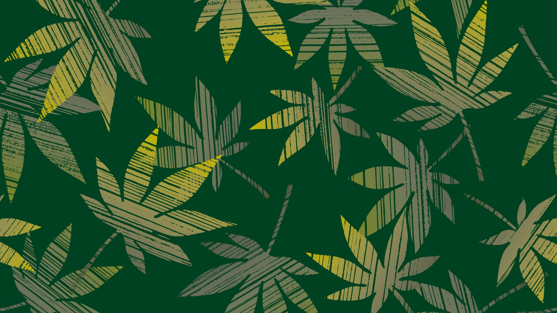 Download Wallpaper 1920x1080 Leaves Cannabis Plants Surface