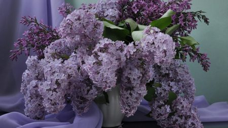 download wallpaper lilac bouquet - photo #19