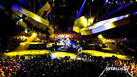 metallica, concert, fan