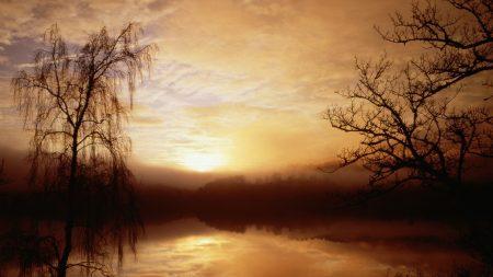 morning, fog, lake