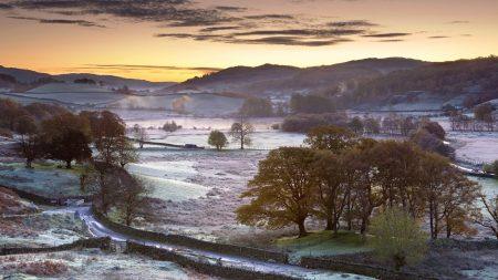 morning, frost, hoarfrost