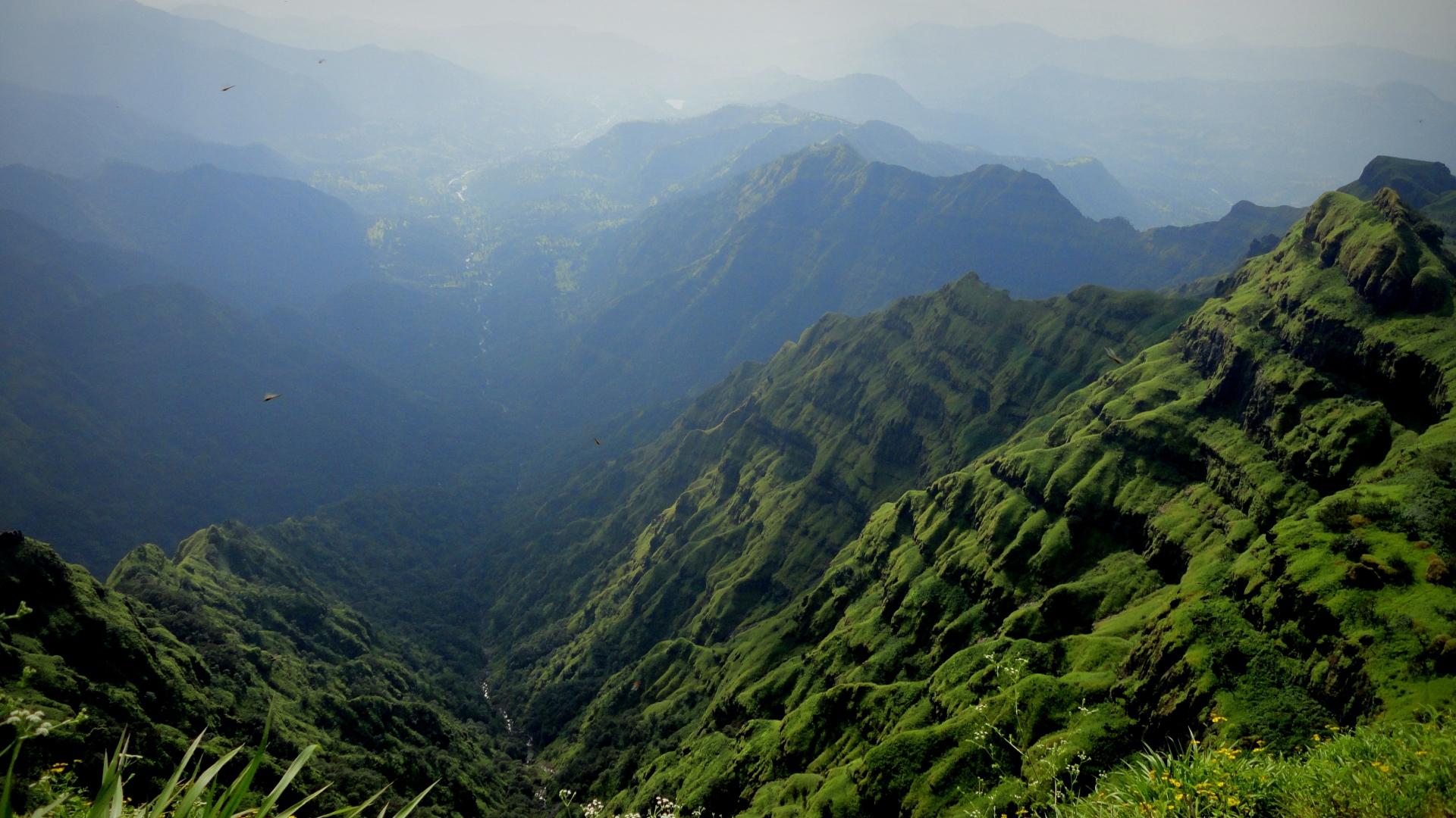 Must see Wallpaper Mountain Fog - mountains_fog_landscape_84625_1920x1080  Photograph_481488.jpg