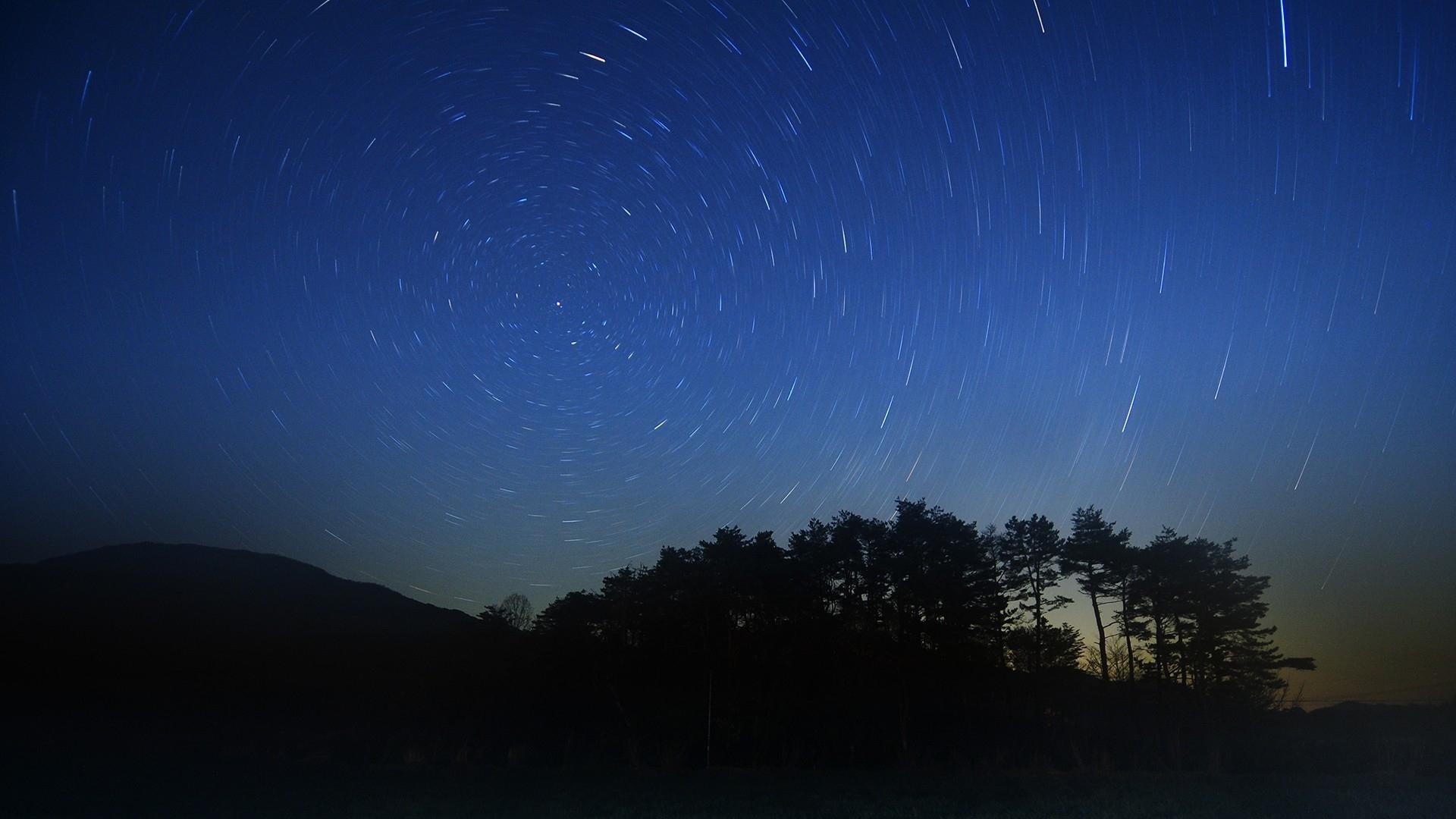 Fantastic Wallpaper Night Grass - night_stars_beautiful_grass_trees_86207_1920x1080  Photograph-81123.jpg