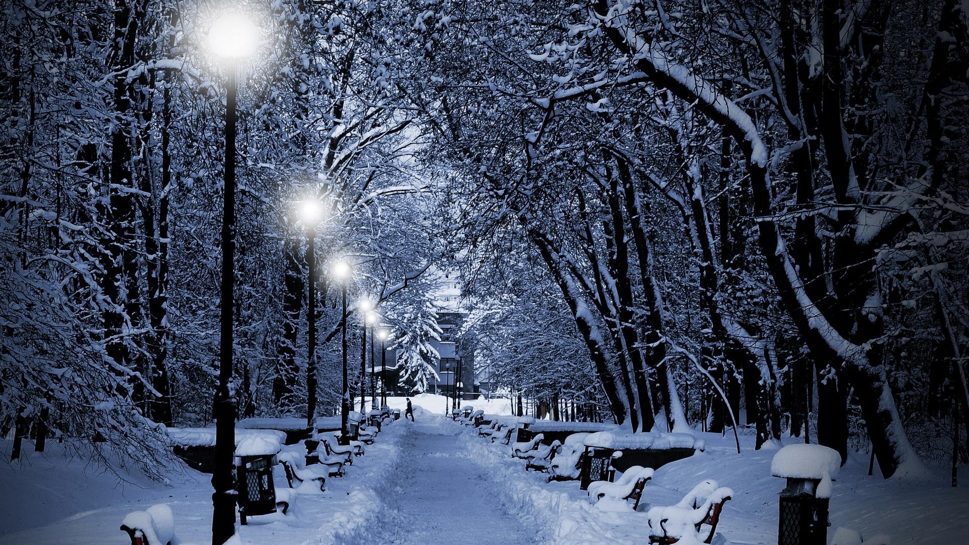 Download Wallpaper 1920x1080 Park Winter Twilight Lamps Light