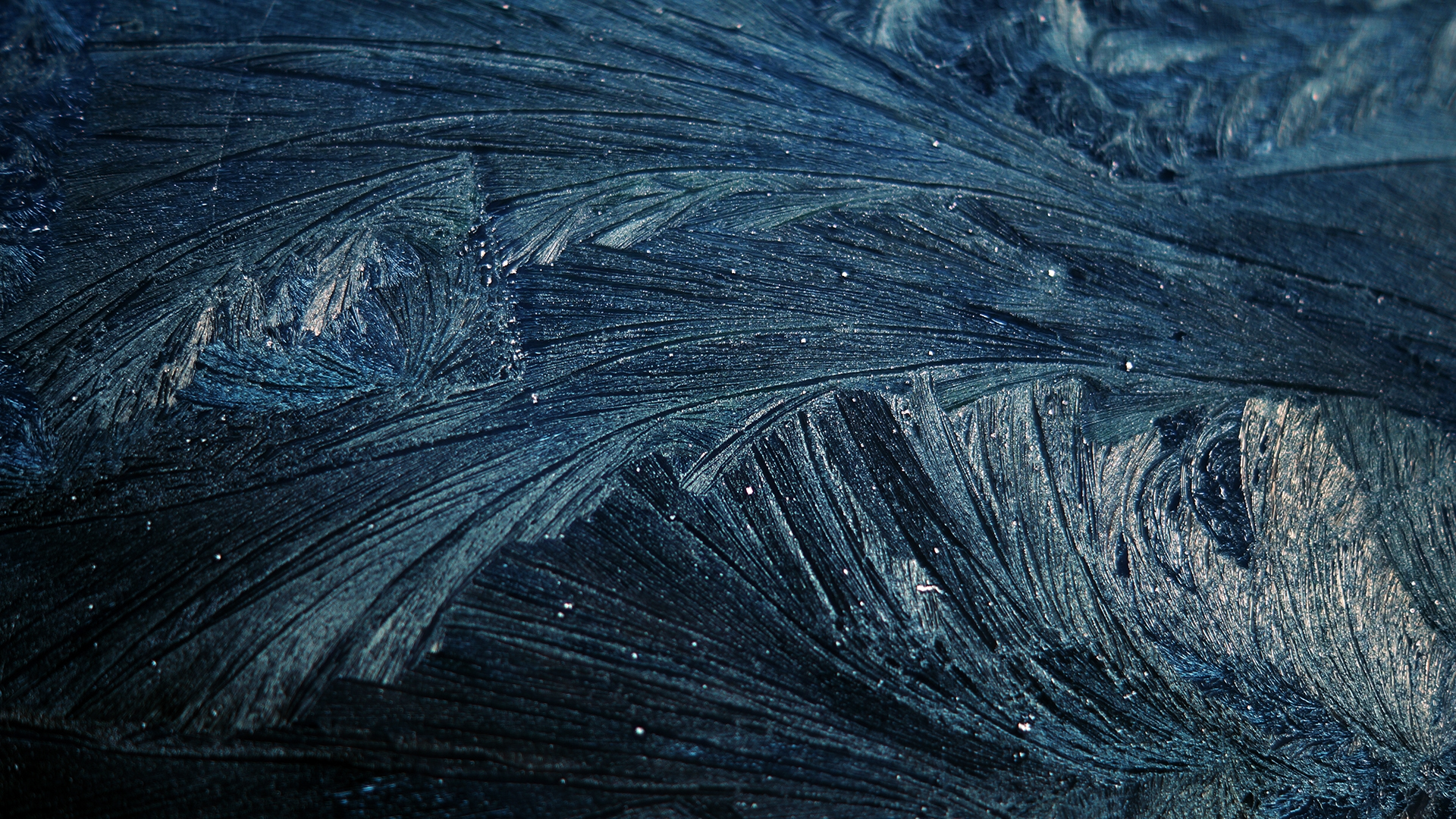 Download wallpaper 1920x1080 pattern frost cold twigs - Hd pattern wallpapers 1080p ...