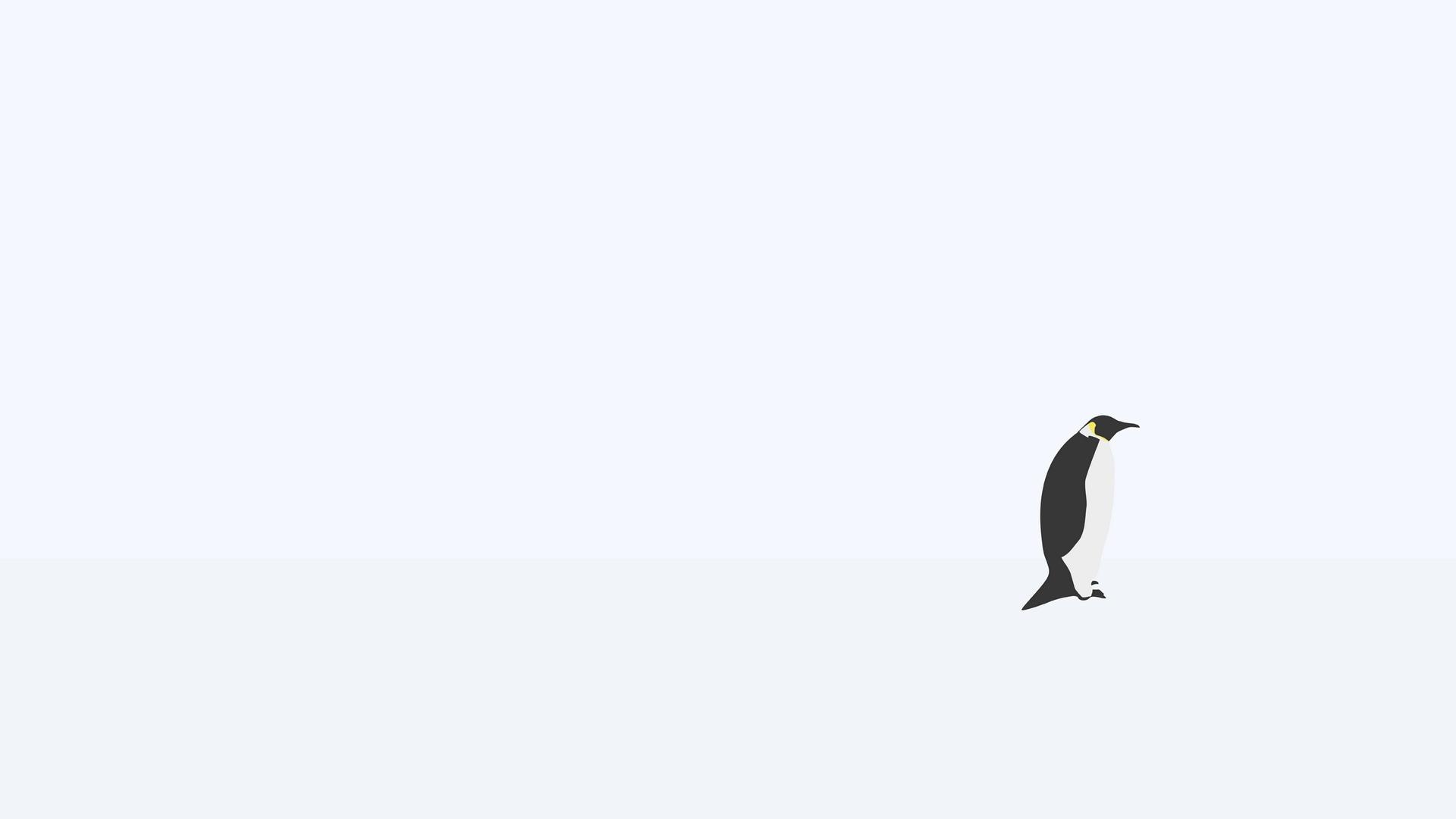 Must see Wallpaper Bird Minimalist - penguin_minimalism_snow_66189_1920x1080  Pictures_35270.jpg