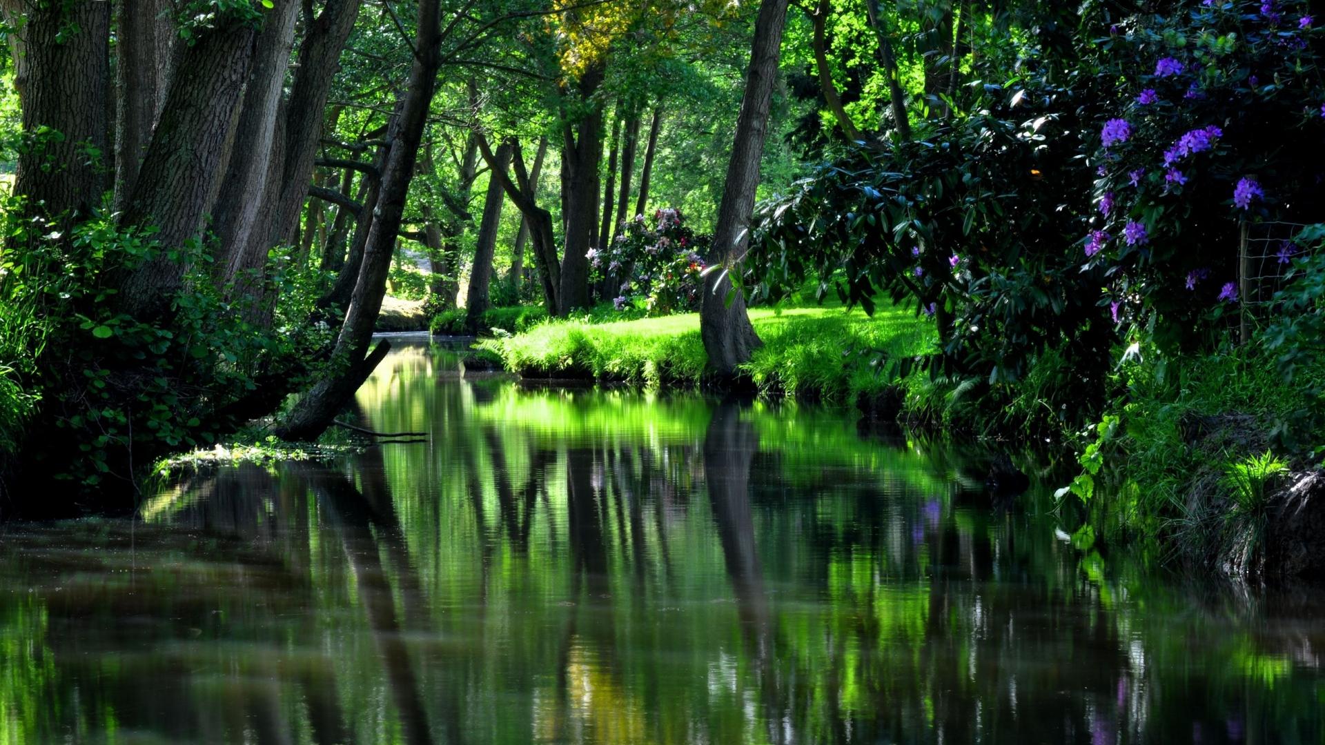 Download Wallpaper 1920x1080 Reservoir River Garden Flowers Trees Shadow Cool Summer