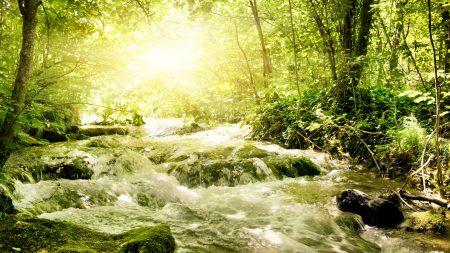 river, light, sun