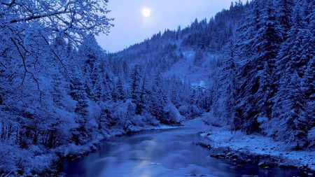 river, trees, winter