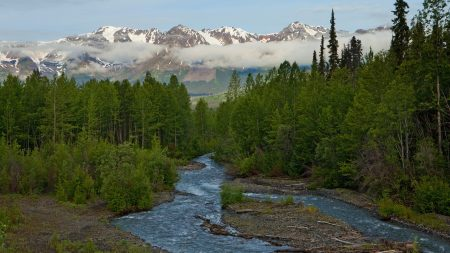 river, wood, mountains