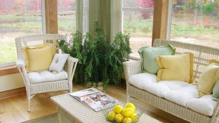 room, sofa, style