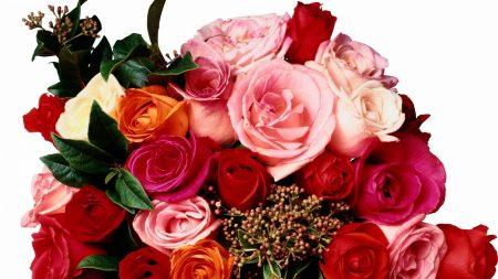 Download Wallpaper 1920x1080 Rose Jasmine Bouquet