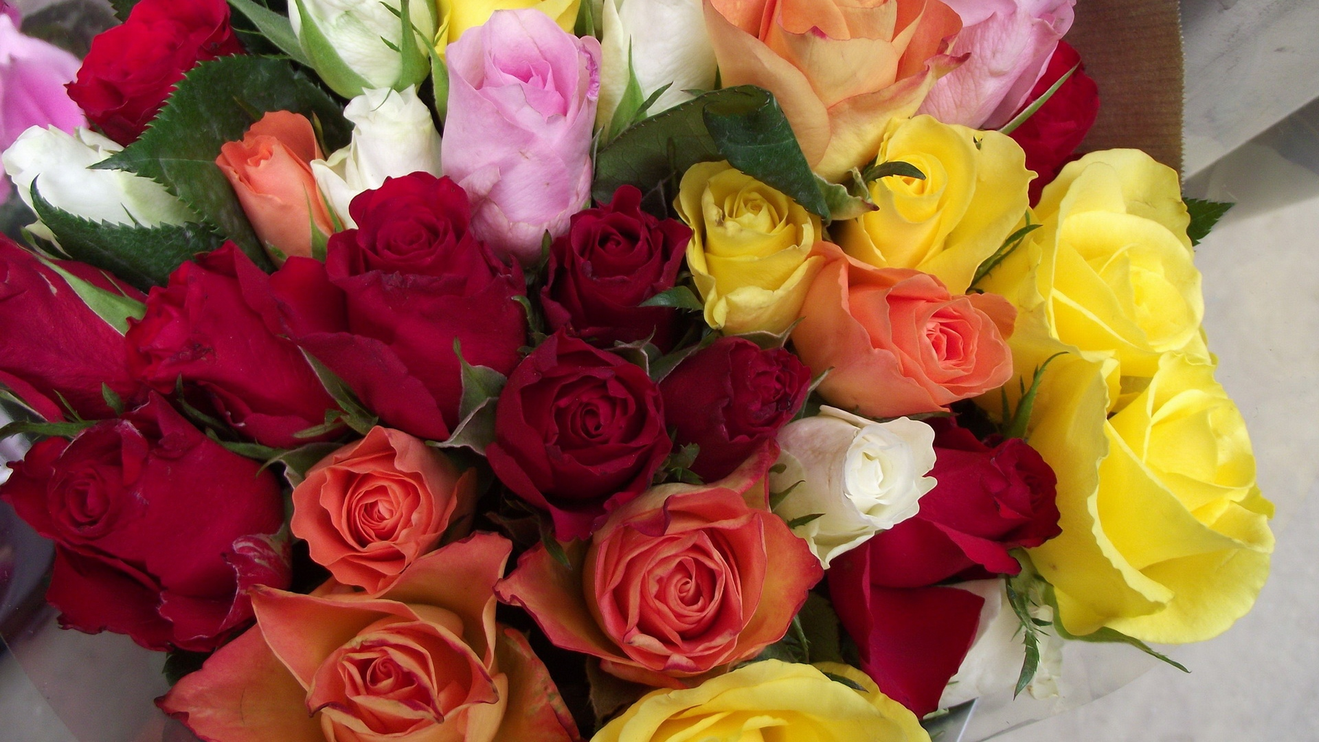 Download wallpaper 1920x1080 roses bouquet different for Different color roses bouquet