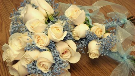 roses, bouquets, tenderness