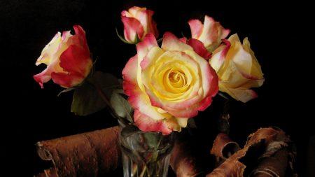 roses, glass, bark