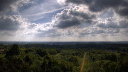 sky, trees, height